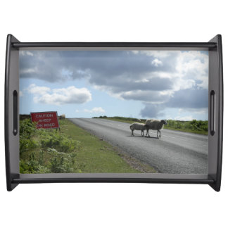 Sheep on road serving tray