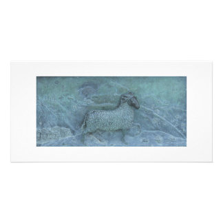 Sheep Relief Photo Greeting Card