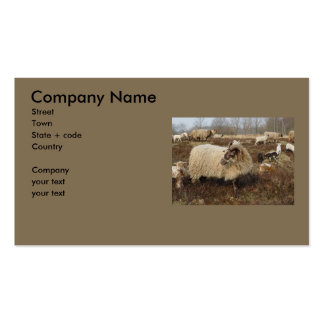 Sheep - Sheep in Heather field Business Card Template