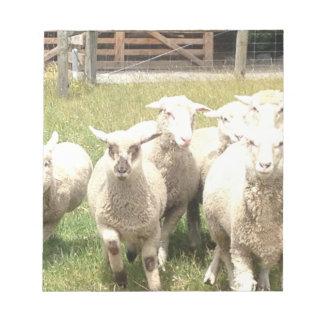 Sheep Stampede Notepad