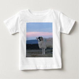 Sheep Tee Shirt Infant