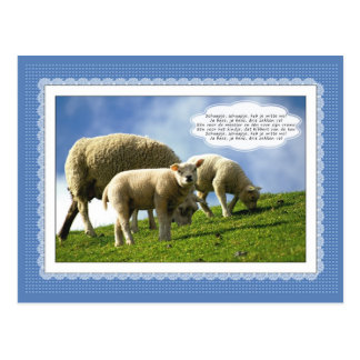 Sheep with dutch children's song postcards