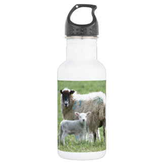 Sheep with her lamb 532 ml water bottle