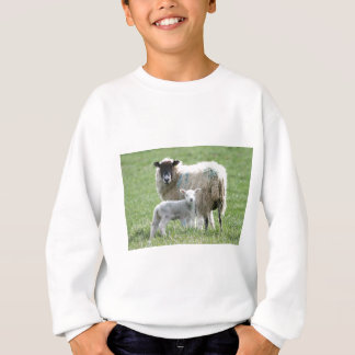 Sheep with her lamb sweatshirt
