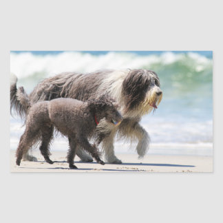 Sheepdog and Poodle - Me and My Pal Rectangular Sticker