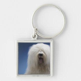 Sheepdog Key Ring