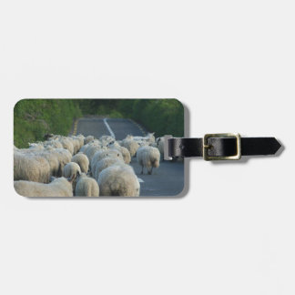 Sheeps in Ireland Luggage Tag