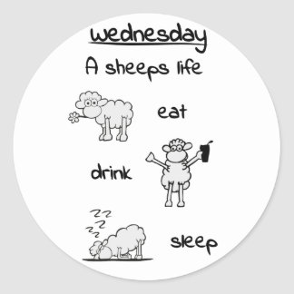 sheeps life wednesday round stickers