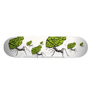 Sheet cut ant nature Stencil Custom Skate Board