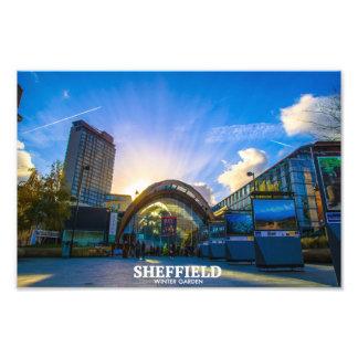 Sheffield Winter Garden Photo Print