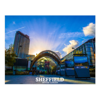 Sheffield Winter Garden Postcard