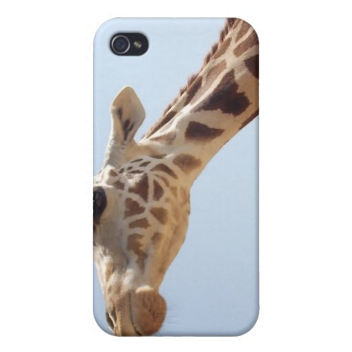 Sheldon The Giraffe (Case) Cover For iPhone 4