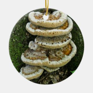 Shelf Fungi on Stump Christmas Ornament