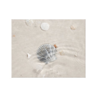 Shell and bubbles in water stretched canvas prints