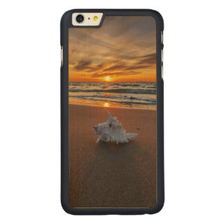 Shell At The Beach At Sunset | Kos Island Carved Maple iPhone 6 Plus Case