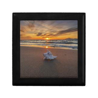 Shell At The Beach At Sunset | Kos Island Small Square Gift Box