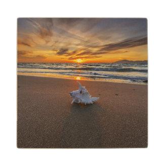 Shell At The Beach At Sunset   Kos Island Wood Coaster