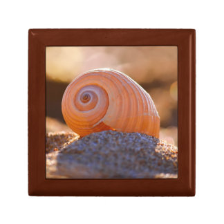 Shell Bokeh |Greece Gift Box
