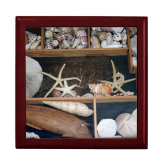 Shell Collection Large Square Gift Box