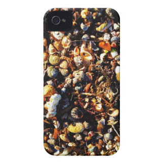 Shell I call you? iPhone 4 Cases