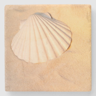 Shell Laying In Sand Stone Coaster