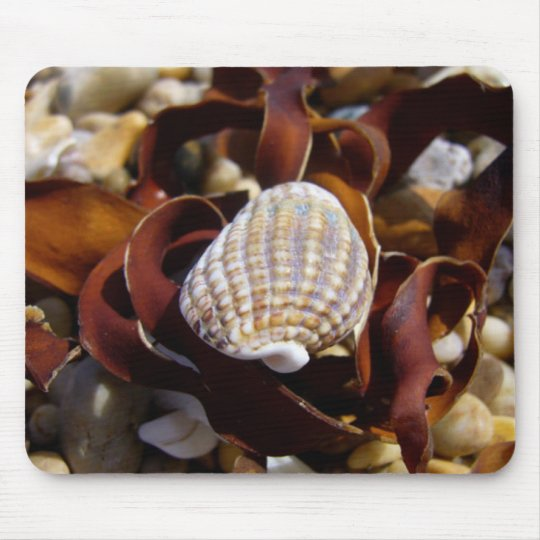 Shell On A Bed Of Seaweed Mouse Mat