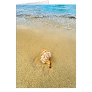 Shell On Beach | Jamaica Card