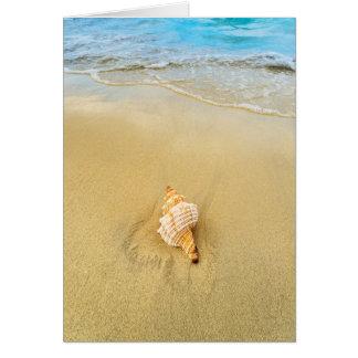 Shell On Beach | Jamaica Greeting Card