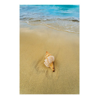 Shell On Beach | Jamaica Poster