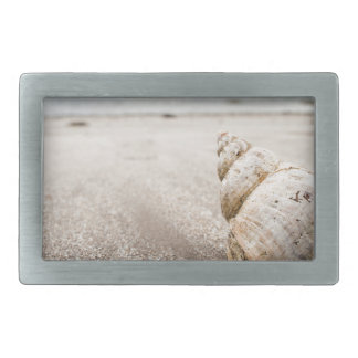 Shell_on_Lady_Bay_Beach Rectangular Belt Buckle