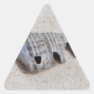 Shell on white sandy beach triangle sticker