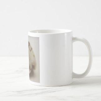 Shell photograph coffee mug