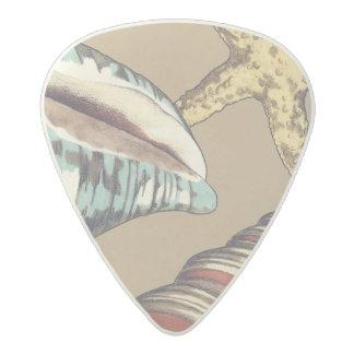 Shell Trio on Khaki Acetal Guitar Pick