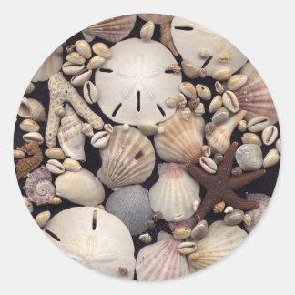 Shells Classic Round Sticker