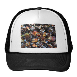 Shells Mesh Hats