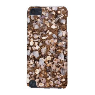 Shells in Mud iPod Touch (5th Generation) Cases