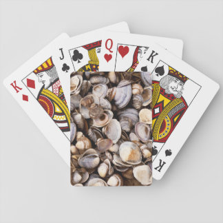 Shells in Mud Playing Cards