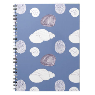 Shells Notebook