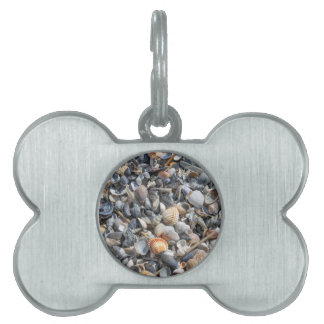 shells on the beach pet ID tag