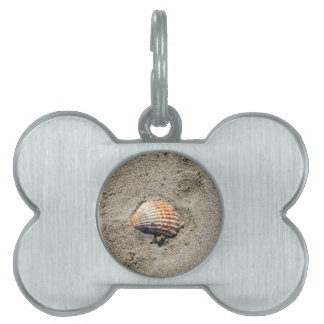 shells on the beach pet tag