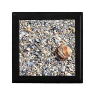 shells on the beach small square gift box