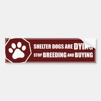 Shelter Dogs Are Dying Bumper Sticker