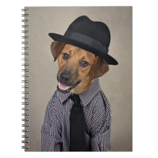 Shelter Pets Project - Bubba Notebook