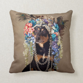 Shelter Pets Project - Midnight Cushion