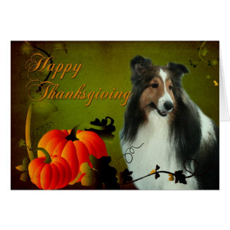 Sheltie #3 Thanksgiving Card