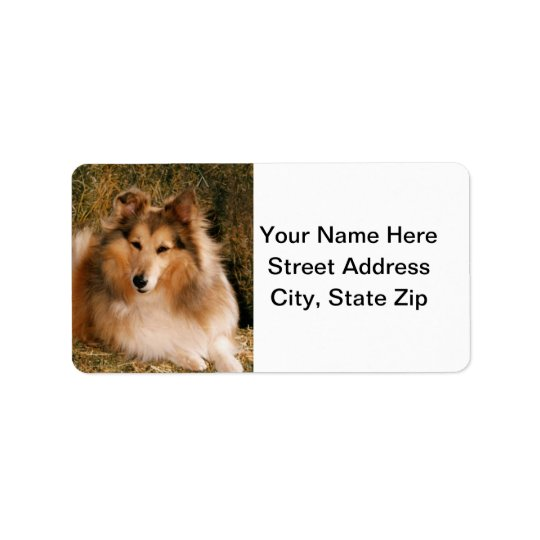 Sheltie Address Label