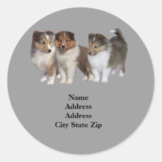 Sheltie Address Label Round Sticker