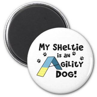 Sheltie Agility Dog Magnet