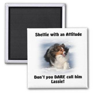 Sheltie Attitude Magnet