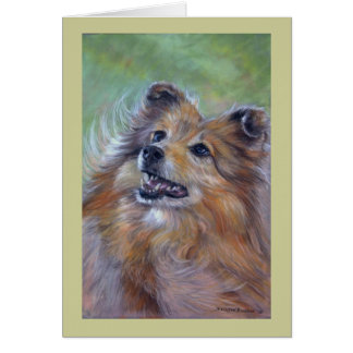 Sheltie Card